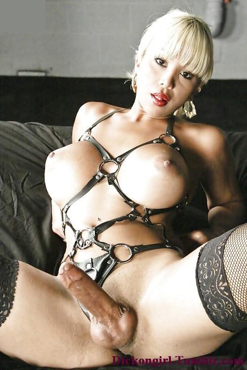 plaisir en webcam avec shemale sexy du 88